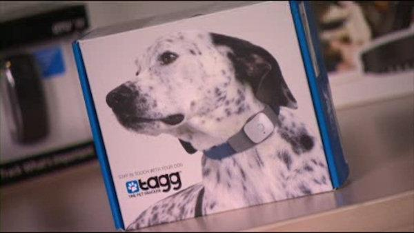 Consumer Reports tested three GPS devices for pets