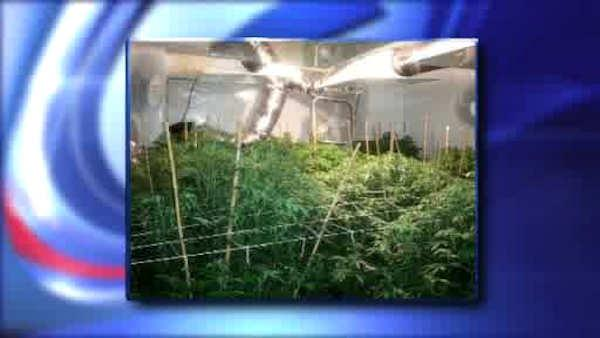 Pot bust inside Bronx apartment