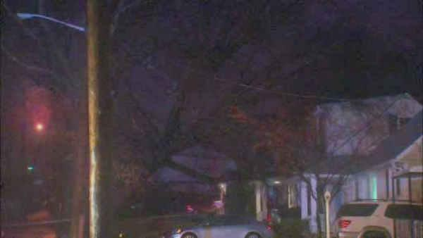 Tree falls on house in Clifton