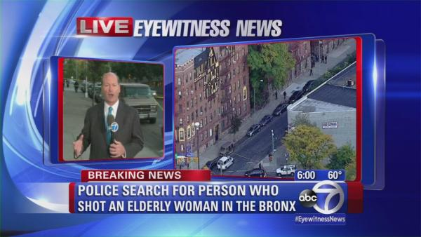 Police searching for person who shot elderly Bronx woman