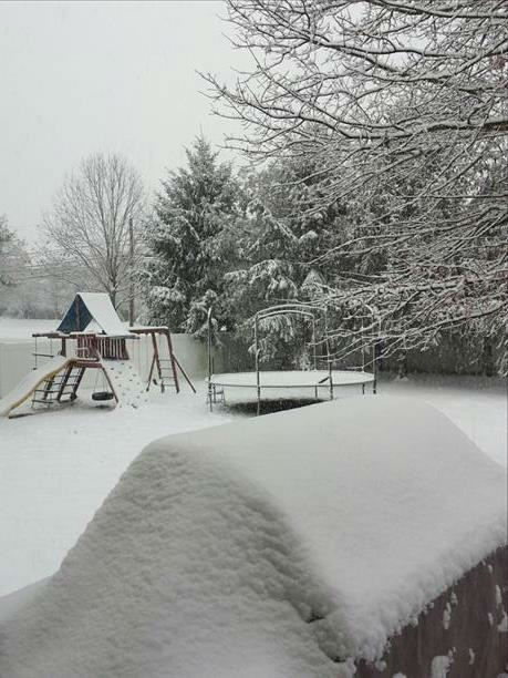 Snow in Monroe Township, NJ on February 3, 2014. <span class=meta>(WABC Photo)</span>