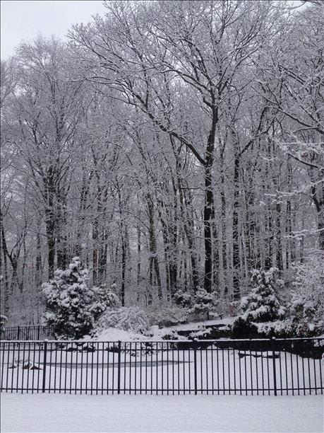 "<div class=""meta ""><span class=""caption-text "">Snow in Dix Hills on February 3, 2014. (WABC Photo)</span></div>"