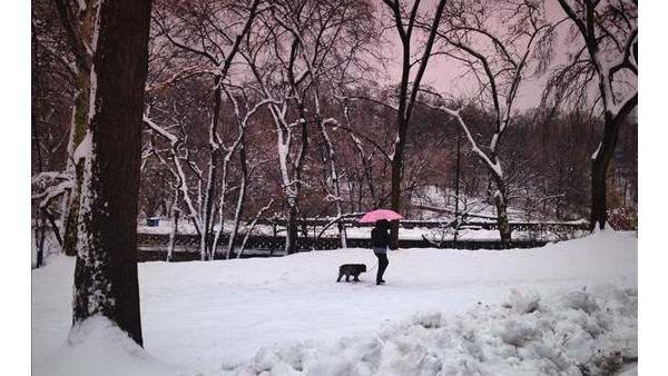 Blissfully quiet in the Central Park by Ellen Cohen