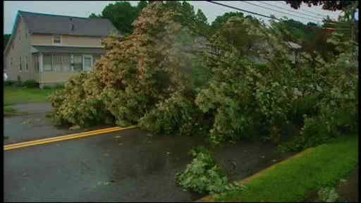 "<div class=""meta ""><span class=""caption-text "">The Northern Suburbs were hit the hardest in Thursday night's storm. Damaging winds brought down trees and power lines.  (WABC Photo)</span></div>"