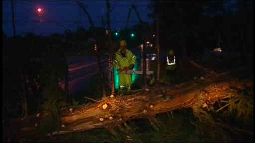 The Northern Suburbs were hit the hardest in Thursday night&#39;s storm. Damaging winds brought down trees and power lines.  <span class=meta>(WABC Photo)</span>