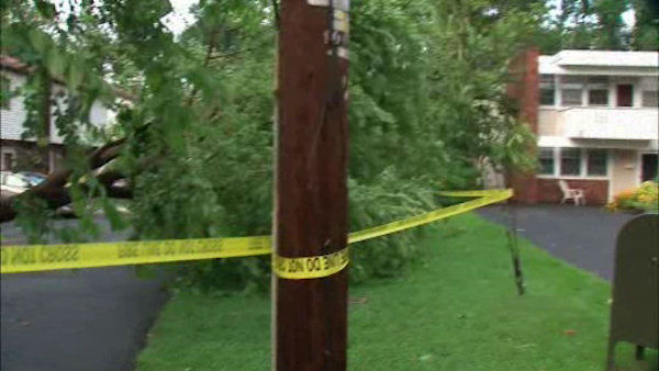 Parts of Rockland County experienced downed trees and power lines on Thursday when a storm cell moved through. <span class=meta>(WABC Photo)</span>