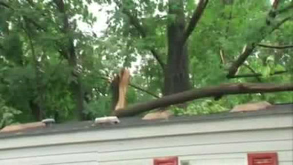 "<div class=""meta image-caption""><div class=""origin-logo origin-image ""><span></span></div><span class=""caption-text"">Parts of Rockland County experienced downed trees and power lines on Thursday when a storm cell moved through. (WABC Photo)</span></div>"