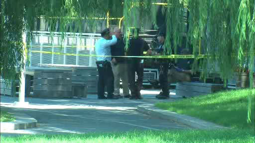 Five people were hurt in a stabbing in and around Riverside Park on the Upper West Side.