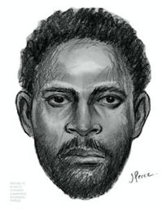 On Thursday, September 19, 2013 at approx. 2:30 P.M., at the intersection of Howard Avenue and Macon Street in the confines of the 81 Precinct in Brooklyn, the perpetrator depicted in the sketch approached a 71 year old female victim from behind, placed her in a choke hold and demanded her purse. When the victim complied and dropped her purse, the male then threw the victim to the ground, picked up her purse and fled east bound on Macon Street towards Saratoga Avenue. Please call Crime Stoppers.