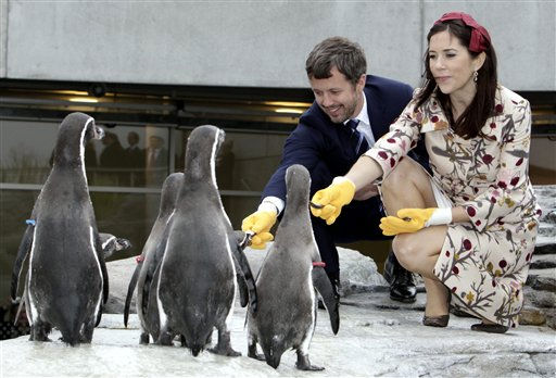 Crown Prince Frederik of Denmark and his wife Crown Princess Mary of Denmark feed penguins as they visit the aquarium in Stralsund, Eastern Germany Monday Sept. 27, 2010. The royal couple is on a two day visit to the coastal region at the Baltic Sea. &#40;AP Photo&#47;dapd&#47; Jens Koehler&#41; <span class=meta>(AP Photo&#47; Jens Koehler)</span>