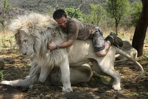 In this photo taken Monday Oct. 11, 2010, Kevin Richardson, a.k.a. the Lion Whisperer piggybacks on the back of a lion in their enclosure at the Kingdom of the White Lion park in Broederstroom, near Johannesburg South Africa. A new film opening in the United States on Friday about a rare white lion who escapes becoming a trophy on a wall is a rare happy ending in a country where more than 1,000 lions are killed legally each year.Kevin Richardson, the man behind the movie, calls himself an &#34;ambassador of lions&#34; and hopes the film will act as one too at a time when foreign tourists are willing to pay up to &#36;40,000 to shoot a big cat.&#40;AP Photo&#47;Denis Farrell&#41; <span class=meta>(AP Photo&#47; Denis Farrell)</span>