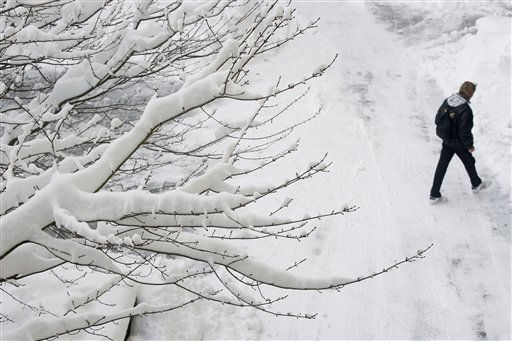 Branches are coated by of an overnight snowfall Monday, Dec. 27, 2010, in Atlantic City, N.J. &#40;AP Photo&#47;Mel Evans&#41; <span class=meta>(AP Photo&#47; Mel Evans)</span>