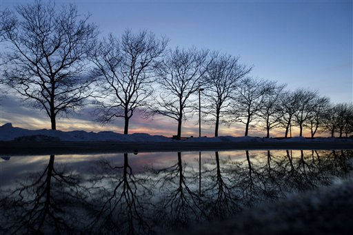 The sunset and trees are reflected on a puddle at Liberty State Park, Monday, Jan. 10, 2011 in Jersey City, N.J. &#40;AP Photo&#47;Julio Cortez&#41; <span class=meta>(AP Photo&#47; Julio Cortez)</span>