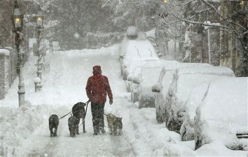 "<div class=""meta image-caption""><div class=""origin-logo origin-image ""><span></span></div><span class=""caption-text"">A man walks a pack of dogs up a Beacon Hill street in Boston, Wednesday, Jan. 12, 2011. The Boston area is expected to receive well over a foot of snow during a day long winter storm.(AP Photo/Charles Krupa) (AP Photo/ Charles Krupa)</span></div>"