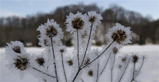 "<div class=""meta ""><span class=""caption-text "">Ice crystals rest on a plant at the Cleveland Metroparks  polo field Monday, Jan. 31, 2011, in Moreland Hills, Ohio. Temperatures will stay in the teens for northeast Ohio on Monday. (AP Photo/Tony Dejak) (AP Photo/ Tony Dejak)</span></div>"