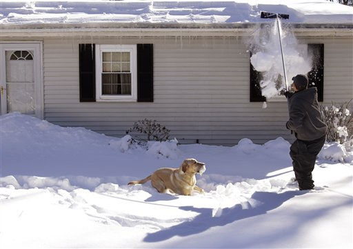 Scott Buchanan scrapes snow off the roof of his house in Pembroke, Mass., Monday morning, Jan. 31, 2011 as his yellow Lab Charlie holds a snow covered ball in his mouth waiting to play catch. The area is expecting anouther winter storm mid-week. &#40;AP Photo&#47;Stephan Savoia&#41; <span class=meta>(AP Photo&#47; Stephan Savoia)</span>