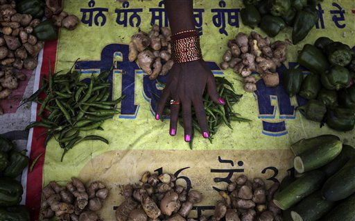 A vegetable vendor sorts green chili as she waits for customers in Amritsar, India, Wednesday, Feb. 9, 2011. &#40;AP Photo&#47;Altaf Qadri&#41; <span class=meta>(AP Photo&#47; Altaf Qadri)</span>