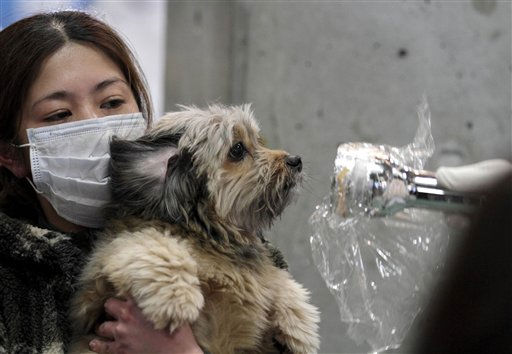 A woman holds her dog as they are scanned for radiation at a temporary scanning center for residents living close to the quake-damaged Fukushima Dai-ichi nuclear power plant Wednesday, March 16, 2011, in Koriyama, Fukushima Prefecture, Japan. &#40;AP Photo&#47;Gregory Bull&#41; <span class=meta>(AP Photo&#47; Gregory Bull)</span>
