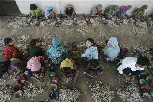 Pakistani girls peel prawns at a fishery in Karachi, Pakistan on Thursday, April 21, 2011. Girls earn Pak Rs. 100 &#40;US&#36;1.15&#41; a day to feed their families. &#40;AP Photo&#47;Fareed Khan&#41; <span class=meta>(AP Photo&#47; Fareed Khan)</span>