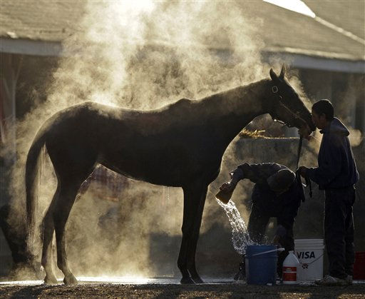 Steam rises off a horse as it gets a bath after a morning workout at Churchill Downs Thursday, May 5, 2011, in Louisville, Ky. &#40;AP Photo&#47;Charlie Riedel&#41; <span class=meta>(AP Photo&#47; Charlie Riedel)</span>