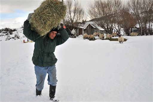 A man walks through the snow carrying a bundle of grass to feed his livestock in Lonquimay, Chile, Thursday, July 21, 2011. Chile&#39;s government declared Lonquimay under emergency after a strong snowstorm hit the town. Snow has reached 2.3 meters high and around 16,000 people are isolated in the area according to authorities. &#40;AP Photo&#47;Carlos Succo&#41; <span class=meta>(AP Photo&#47; Carlos Succo)</span>