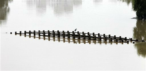 A bird sits on the top of the flooded bridge caused by heavy rains at an ecology park in Seoul, South Korea, Friday, July 29, 2011. Torrential downfalls since Tuesday have severely disrupted life in Seoul and its surrounding areas, submerging streets filled with idled cars, flooding subway stations and forcing businesses to shut. &#40;AP Photo&#47;Lee Jin-man&#41; <span class=meta>(AP Photo&#47; Lee Jin-man)</span>