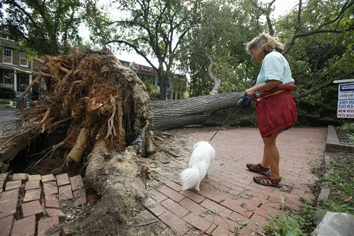 Nan Raphael and her dog Jazz check out damage to their block where a large tree was blown over during gusts from Hurricane Irene, Monday, Aug. 29, 2011, in the Capitol Hill neighborhood of Washington. According to Raphael her condominium building was grazed by the tree but there wasn&#39;t any damage. &#34;We&#39;re just waiting our turn for it to be cleaned up,&#34; says Raphael. &#40;AP Photo&#47;Jacquelyn Martin&#41; <span class=meta>(AP Photo&#47; Jacquelyn Martin)</span>