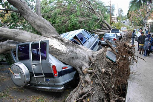 A van parked in the Highland Park section of Los Angeles and another car are shown damaged by trees early Thursday, Dec. 1, 2011 as high winds up to 50 and 60 MPH tore through the southland.  High winds flipped over trees and trucks and knocked out power to more than 300,000 California customers. &#40;AP Photo&#47;Mike Meadows&#41; <span class=meta>(AP Photo&#47; Mike Meadows)</span>