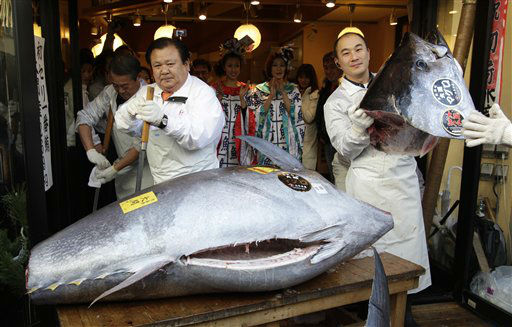 Kiyoshi Kimura, president of Kiyomura Co., left, cuts a bluefin tuna in front of his Sushi Zanmai restaurant near Tsukiji fish market in Tokyo Thursday, Jan. 5, 2012. The bluefin tuna caught off northeastern Japan fetched a record 56.49 million yen, or about &#36;736,000, in the first auction of the year at the fish market. The tuna was caught off Oma in Aomori prefecture and just north of the coast that was battered by the March 11 tsunami. &#40;AP Photo&#47;Shizuo Kambayashi&#41; <span class=meta>(AP Photo&#47; Shizuo Kambayashi)</span>