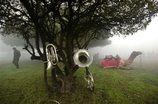 "<div class=""meta ""><span class=""caption-text "">Paramilitary soldiers of the Indian Border Security Force wait with their musical instruments and camels amidst winter morning fog before the start of Republic Day parade rehearsals in New Delhi, India, Wednesday, Jan. 18, 2012.  (AP Photo/ Manish Swarup) (AP Photo/ Manish Swarup)</span></div>"