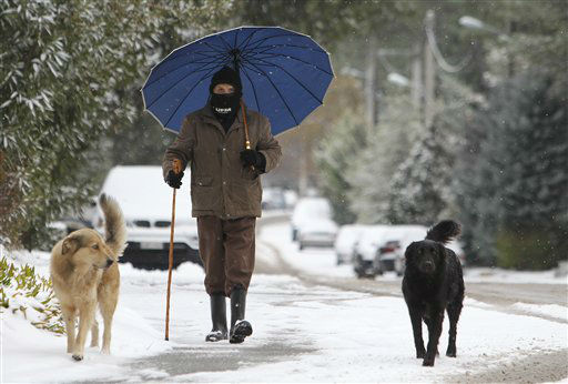 A man makes his way on a snow covered street with his dogs in northern Athens, Wednesday, Feb. 1, 2012. Snowfall and frost were reported in most parts of Greece for a third day. &#40;AP Photo&#47;Thanassis Stavrakis&#41; <span class=meta>(AP Photo&#47; Thanassis Stavrakis)</span>