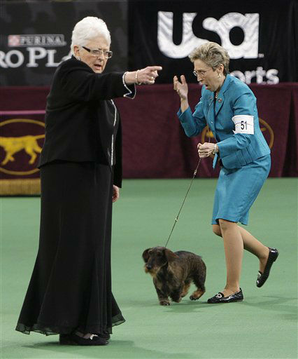 Handler Cheri Koppenhaver, right, reacts after judge Patricia Laurans, left, declared Cinders, a wirehaired dachshund, the winner of the hound group at the 136th annual Westminster Kennel Club dog show in New York, Monday, Feb. 13, 2012. &#40;AP Photo&#47;Seth Wenig&#41; <span class=meta>(AP Photo&#47; Seth Wenig)</span>