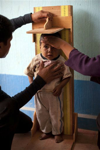 Mynor Bravo Garcia, 3, is measured at a health center in San Juan Atitan, Guatemala, Wednesday Feb. 15, 2012. Guatemala&#39;s President Otto Perez Molina is launching on Thursday a nationwide campaign against malnutrition called &#34;Zero Hunger,&#34; run by a new ministry dedicated to social development.  In Guatemala, the chronic undernutrition rate for children under 5 is 49.8 percent, the highest in the region and the fourth highest in the world, according to the World Food Programme. &#40;AP Photo&#47;Rodrigo Abd&#41; <span class=meta>(AP Photo&#47; Rodrigo Abd)</span>