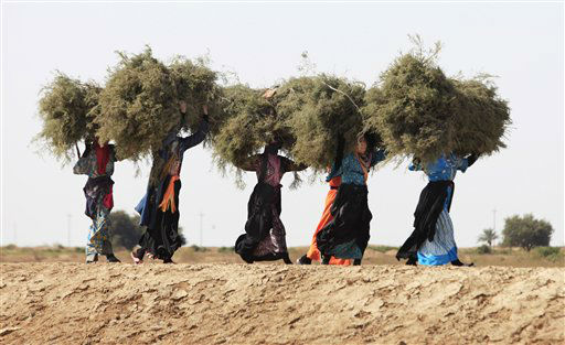 In this Wednesday March 7, 2012 photo, women carry wood for cooking in Amarah, 200 miles &#40;320 kilometers&#41; southeast of Baghdad, Iraq. International Women&#39;s Day held each year on March 8, celebrates the economic, political and social achievements of women.  &#40;AP Photo&#47;Karim Kadim&#41; <span class=meta>(AP Photo&#47; Karim Kadim)</span>