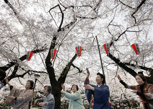Miya Edakawa, second from right, a volunteer Japanese dance teacher, leads her dance group members during their cherry blossoms viewing party at Ueno Park in Tokyo Tuesday, April 10, 2012. Edakawa encourages the elderly to practice dancing to protect themselves from senile decay. &#40;AP Photo&#47;Koji Sasahara&#41; <span class=meta>(AP Photo&#47; Koji Sasahara)</span>