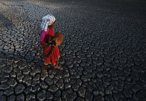 An Indian shepherd woman carries a lamb as she walks across a dried pond on the outskirts of Hyderabad, India, Thursday, April 26, 2012. &#40;AP Photo&#47;Mahesh Kumar A.&#41; <span class=meta>(AP Photo&#47; Mahesh Kumar A.)</span>