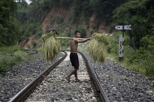 In this Tuesday, May 29, 2012 photo, a man crosses a railway track as he carries harvested paddy in village Digaru Mukh, near Gauhati, India. India plans to export up to 7 million tons of rice this year and a similar amount in the next fiscal year, according to government figures. (AP Photo/Anupam Nath)