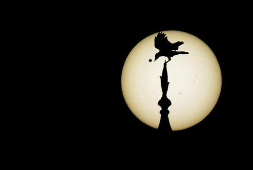 A bird sits atop one of the domes of the landmark Taj Mahal as Venus, top left, begins to pass in front of the sun, as visible from Agra, India, Wednesday, June 6, 2012. People around the world turned their attention to the daytime sky on Tuesday and early Wednesday in Asia to make sure they caught the rare sight of the transit of Venus.  &#40;AP Photo&#47;Kevin Frayer&#41; <span class=meta>(AP Photo&#47; Kevin Frayer)</span>