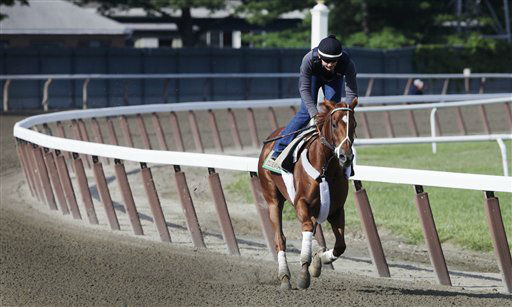 I&#39;ll Have Another, with exercise rider Jonny Garcia up, trains at Belmont Park, Wednesday, June 6, 2012, in Elmont, N.Y. The winner of the Kentucky Derby and Preakness will attempt to win the Belmont Stakes and Triple Crown  Saturday. &#40;AP Photo&#47;Mark Lennihan&#41; <span class=meta>(AP Photo&#47; Mark Lennihan)</span>