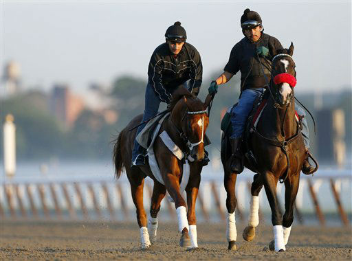 I&#39;ll Have Another, left, with exercise rider Jonny Garcia, accompanied by stablemate Lava Man, trains at Belmont Park, Friday, June 8, 2012, in Elmont, N.Y.  I&#39;ll Have Another&#39;s  bid for a Triple Crown ended with the news Friday that the colt was out of the Belmont Stakes due to a swollen left front tendon. According to Dennis O&#39;Neill, brother of trainer Doug O&#39;Neill, the horse galloped Friday morning, June 8, 2012, and after a veterinary scan, the tendon seemed &#34;kind of tender.&#34; &#40;AP Photo&#47;Mark Lennihan&#41; <span class=meta>(AP Photo&#47; Mark Lennihan)</span>