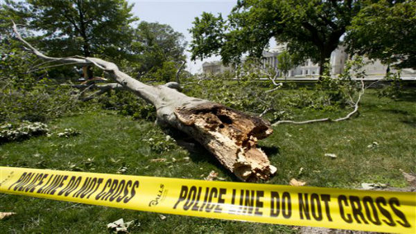 A tree blown over during a intense storm late Friday night lays on the ground in front of the U.S. Capitol in Washington Saturday, June 30, 2012.  Violent storms swept across the eastern U.S., killing at least nine people and knocking out power.  &#40;AP Photo&#47;Manuel Balce Ceneta&#41; <span class=meta>(AP Photo&#47; Manuel Balce Ceneta)</span>