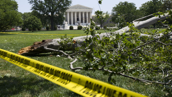 An American beech tree is down on Capitol Hill grounds in Washington Saturday, June 30, 2012 across theU.S. Supreme Court, background, after a powerful storm swept across the Washington region late Friday. Violent storms swept across the eastern U.S., killing at least nine people and knocking out power to hundreds of thousands on a day that temperatures across the region are expected to reach triple-digits. &#40;AP Photo&#47;Manuel Balce Ceneta&#41; <span class=meta>(AP Photo&#47; Manuel Balce Ceneta)</span>