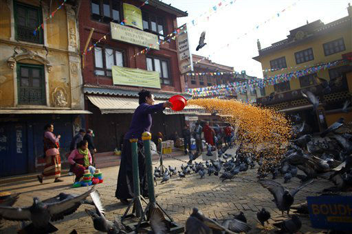 A Nepalese Buddhist woman feeds pigeons near the Boudhanath Stupa in Katmandu, Nepal, Tuesday, March 19, 2013. A Tibetan monk self immolated last month in the premise of this stupa, an important pilgrimage site for Buddhists. &#40;AP Photo&#47;Niranjan Shrestha&#41; <span class=meta>(AP Photo&#47; Niranjan Shrestha)</span>