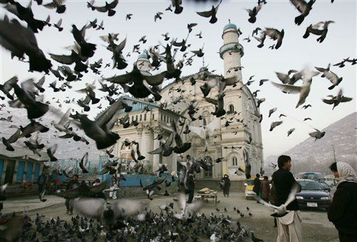 Pigeons fly outside Shah-e-Doshamshera&#39;s mosque in Kabul, Afghanistan, Monday, Dec. 24, 2012. &#40;AP Photo&#47;Ahmad Nazar&#41; <span class=meta>(AP Photo&#47; Ahmad Nazar)</span>