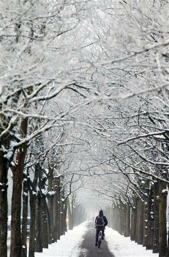 A man cycles under frost-covered trees in Ghent, 50 km &#40;31 miles&#41; west of Brussels, Thursday, Jan. 17, 2013. &#40;AP Photo&#47;Yves Logghe&#41; <span class=meta>(AP Photo&#47; Yves Logghe)</span>