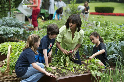 "<div class=""meta ""><span class=""caption-text "">First lady Michelle Obama joins school children from Long Beach Island Grade School in Ship Bottom, N.J., left, and second from left, and Union Beach Memorial School in Union Beach, NJ, right, to harvest the summer crop from the White House kitchen garden, Tuesday, May 28, 2013, at the White House in Washington.  (AP Photo/Manuel Balce Ceneta) (AP Photo/ Manuel Balce Ceneta)</span></div>"
