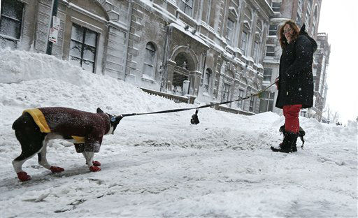 "<div class=""meta ""><span class=""caption-text "">Victoria Savage tries to get her Boston Terrier named Moe to walk during an outing in the Beacon Hill neighborhood of Boston, Saturday, Feb. 9, 2013. The Boston area received about two feet of snow from a winter storm. A howling storm across the Northeast left the New York-to-Boston corridor shrouded in 1 to 3 feet of snow Saturday, stranding motorists on highways overnight and piling up drifts so high that some homeowners couldn't get their doors open. More than 650,000 homes and businesses were left without electricity. (AP Photo/Charles Krupa) (AP Photo/ Charles Krupa)</span></div>"