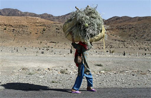 An Afghan girl carries firewood for her home in Gushta district of Nangarhar province, east of Kabul, Afghanistan, Monday, Oct. 1, 2012. &#40;AP Photo&#47;Rahmat Gul&#41; <span class=meta>(AP Photo&#47; Rahmat Gul)</span>