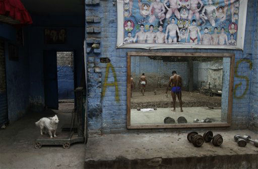 A dog looks at Pakistani Kushti wrestlers, right, reflected on a mirror, attend their daily training session in Lahore, Pakistan, Tuesday, Feb. 26, 2013. Kushti, an Indo-Pakistani form of wrestling, is several thousand years old and is a national sport in Pakistan. (AP Photo/Muhammed Muheisen)