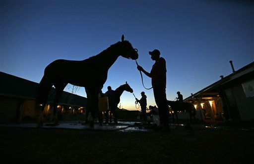 Horses are washed after their morning workouts at Churchill Downs Wednesday, May 1, 2013, in Louisville, Ky. &#40;AP Photo&#47;Charlie Riedel&#41; <span class=meta>(AP Photo&#47; Charlie Riedel)</span>